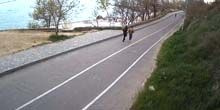 Health Track, Vista a la playa - Webcam, Odessa